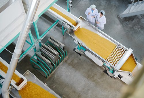 food-production-industry